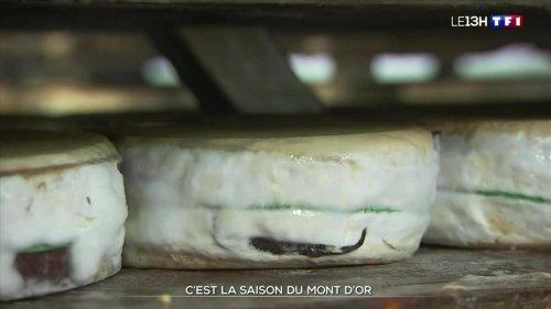 Les secrets de fabrication du Mont d'Or dans le Jura