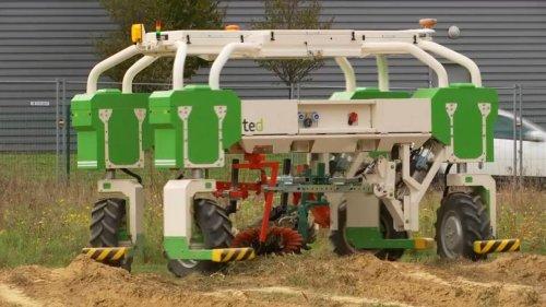 VIDÉO - Agriculture : des robots dans les champs pour désherber sans pesticides