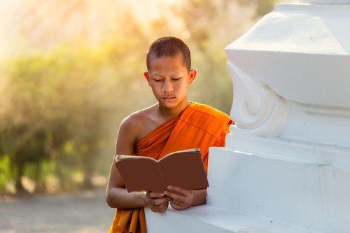 The 7 Best Books for Beginner Buddhists