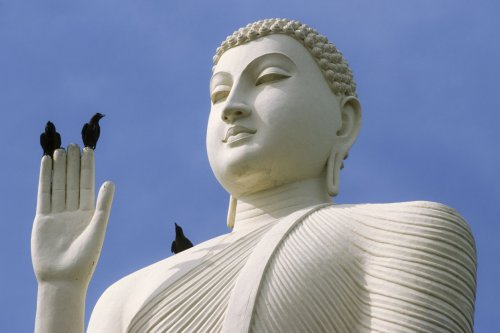 Why Do Buddhists Avoid Attachment?