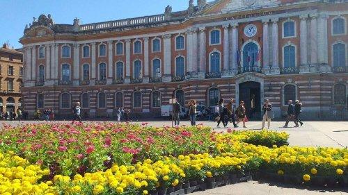 La place du Capitole va se transformer en paradis de la verdure ce dimanche