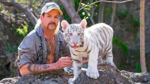 Tiger King : la série docu à succès revient sur Netflix pour une saison 2