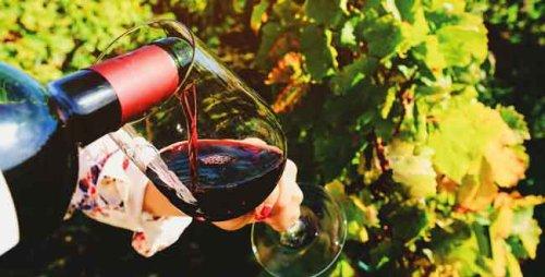Foire aux vins LECLERC : priorité à la qualité