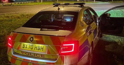 Driver 'knowingly' runs out of fuel on A46