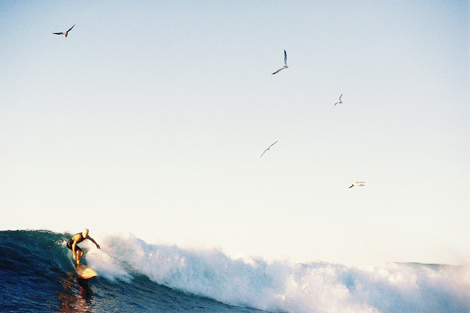 O'ahu's Odd and Oddly Titled Surf Breaks