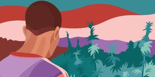 Au Maroc, les petits cultivateurs de marijuana craignent d'être les perdants de la légalisation