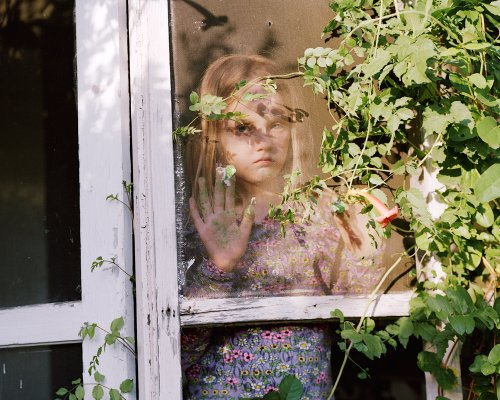 Bittersweet on Bostwick Lane - Photographs and text by Susan Worsham | LensCulture