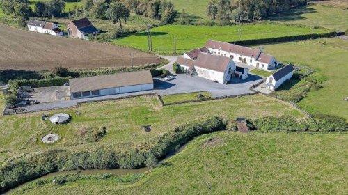 Un bien exceptionnel mis en vente à près d'1,6 million d'euro dans le Hainaut