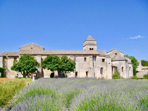 Vacances en Provence : Trois expériences culinaires à découvrir dans les Alpilles