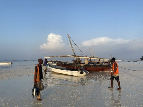 Zanzibar, le paradis qui avait vaincu la peur