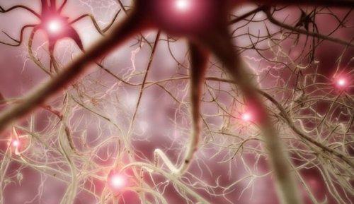 """Attaque du cerveau par le Covid-19 : """"Cela pourrait expliquer les syndromes neurologiques"""""""