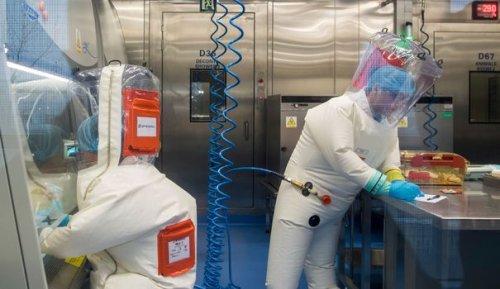 Accident de laboratoire à Wuhan : quand les théories du complot sont parfois vraies