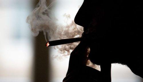 Benjamin Sire : Pourquoi la légalisation du cannabis est une illusion