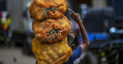 Le Sri Lanka abandonne le 100 % bio six mois après son entrée en vigueur