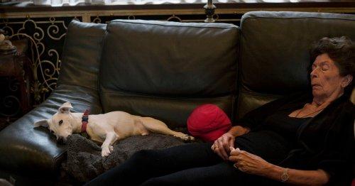 Euthanasie : «le Grand Jour» pour mourir dans la dignité