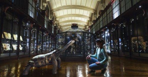 Les animaux disparus «revivent» sous nos yeux au Muséum d'histoire naturelle