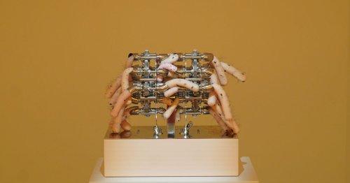 Machines à serrer les fesses