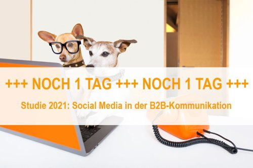 ALTHALLER communication - Gesellschaft für Markenkommunikation mbH on LinkedIn: #Ergebnisse #Langzeitstudie #Umfrage