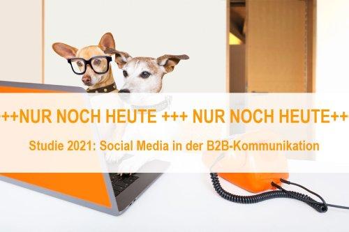 "ALTHALLER communication - Gesellschaft für Markenkommunikation mbH on LinkedIn: Last Call – unsere Umfrage ""Social Media in der B2B-Kommunikation"""