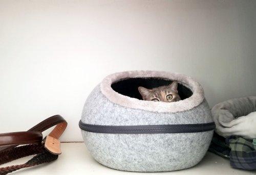 Wir stellen Ihnen die schönsten und gemütlichsten Katzenhöhlen aus Filz vor!