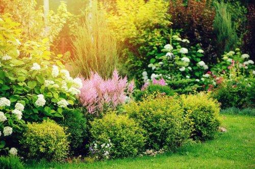 Bio-Dünger: Für Gemüse und Pflanzen ohne Chemie