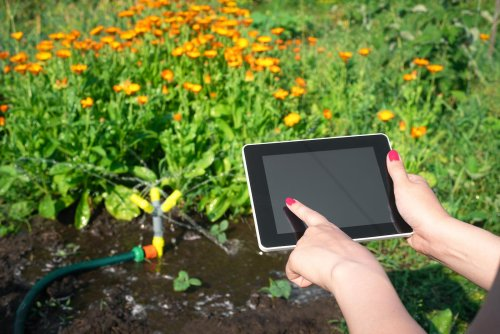Bewässerungscomputer nutzen für mehr Freizeit