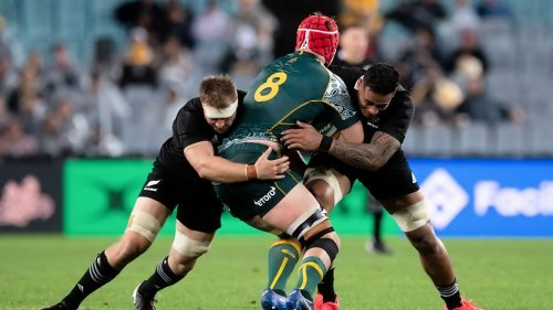 Bledisloe Cup 2021: Match Dates, Venues and Where to Watch in Australia