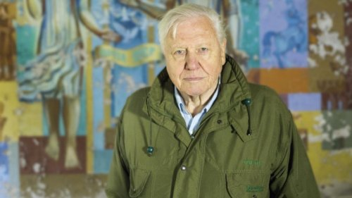 The Ways to Stop Climate Change, According to David Attenborough