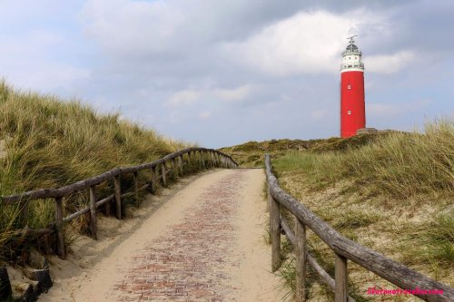 Must-See Sites for Nature-Lovers in the Netherlands