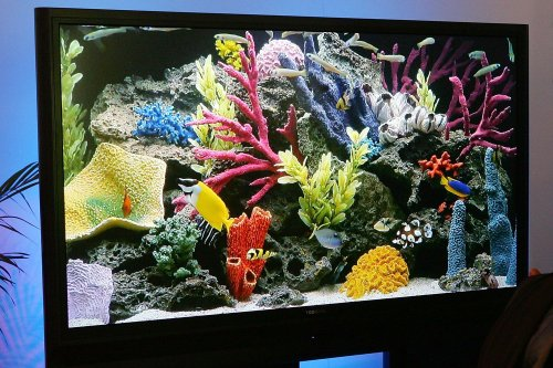 What Is a Rear Projection TV?
