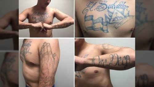 Biden Administration Ignores Threat From MS-13 Despite Warnings