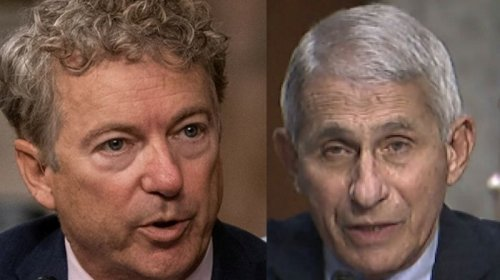 Rand Paul Blasts Fauci For Acting Like A 'Petty Tyrant'