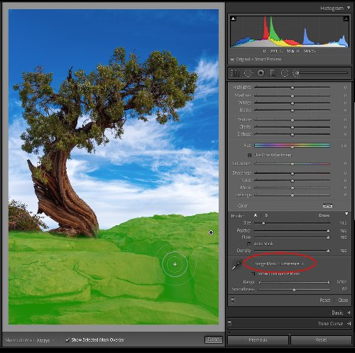 Making the Most of Local Adjustments and Their Masks - Lightroom Killer Tips