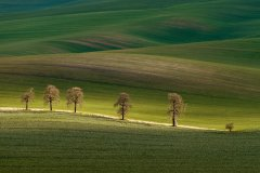 Discover landscape photography