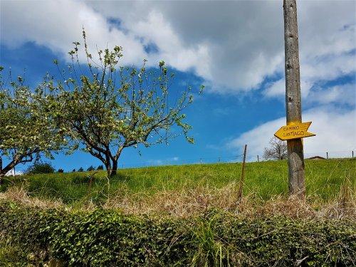 DEN Jakobsweg gibt es nicht – die 6 schönsten Caminos