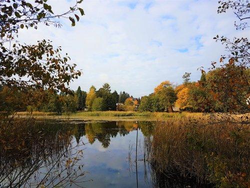 Die schönsten Herbstwanderungen in Deutschland - Insider-Tipps von Outdoorblogger*innen - Little Red Hiking Rucksack - Wandern I Trekking I Nachhaltigkeit - der Outdoorblog
