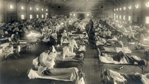 Lessons from the largest of all pandemics