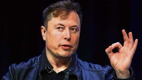'Dogecoin is money': Check Elon Musk's message amid crypto rally