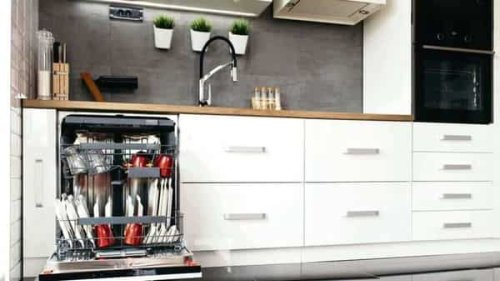 BSH Home Appliances rolls out dishwashers customised for India