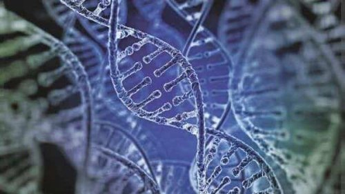A genetic revolution that aims to manipulate the very basis of life