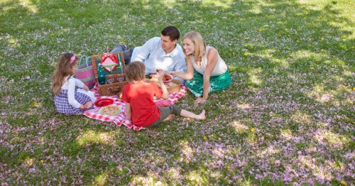 Berkshire's perfect picnic spots and what makes them great