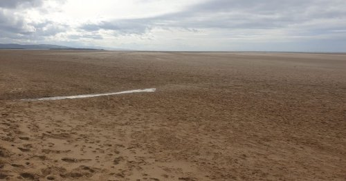 People confused as grass 'disappears' from beach after storm