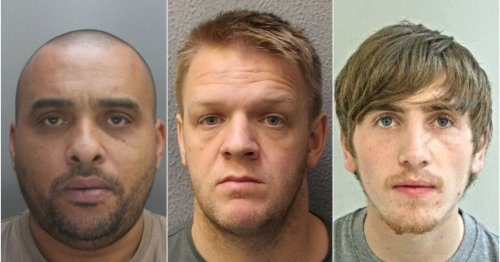 Paedo dog killer, disgraced cop and young gunman jailed this week