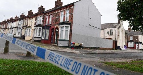 Balloons at murder scene, man hurls vase and baby mauled by dog