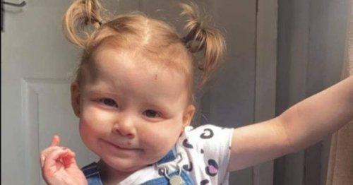 Girl, 2, died after swallowing battery from remote control
