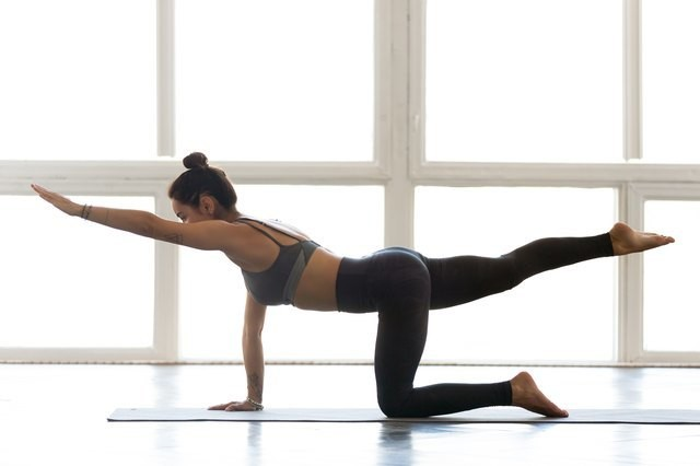 The Bird Dog Exercise Is the Core Move Your Ab Workouts Have Been Missing