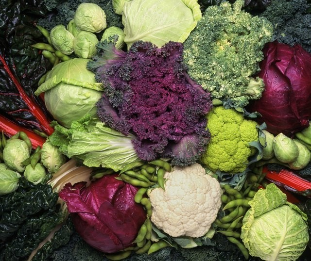 How to Support Your Gut Health With Fiber-Rich, Nutritious Prebiotics
