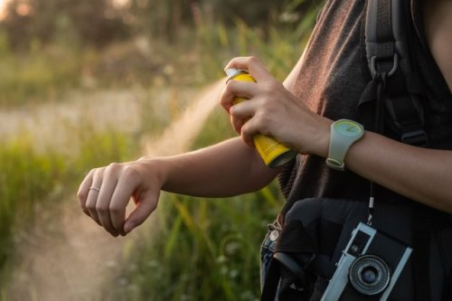 The 8 Best Mosquito Repellents in 2021