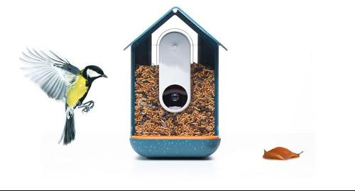 Bird Feeder With Smart Camera