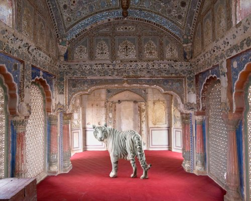 Holden Luntz : Rooms that Resonate with Possibilities : Karen Knorr - The Eye of Photography Magazine